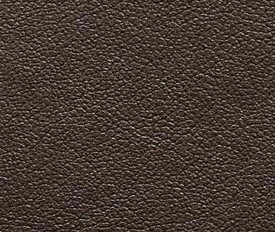 Nastro in Ecopelle marrone, altezza 10 cm